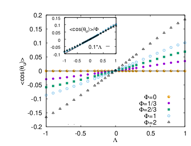 FIG. 1: (Left) Average of the cosine of the angle between swimming direction and local velocity as a function of the parameter Λ which controls the particle shape (Λ = −1, 0, 1 for disks, spheres and rods), for different swimming speeds Φ.